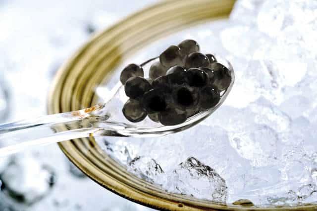 Gros plan sur du caviar, mets à déguster pour les fêtes de fin d'année.