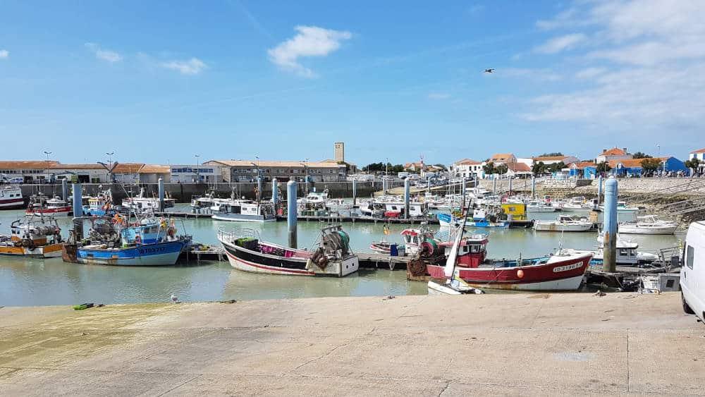 Du port de la Cotinière à notre étal